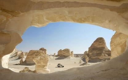 Nel Sahara occidentale e nel Sahel ci sono 1,8 miliardi di alberi