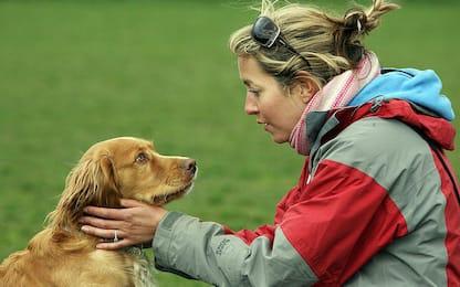 Parole e suoni con toni acuti invitano i cani a giocare