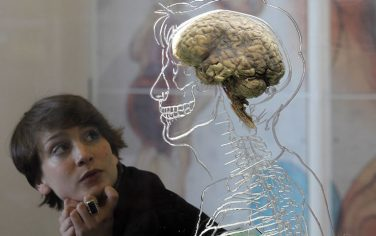 GettyImages-brain