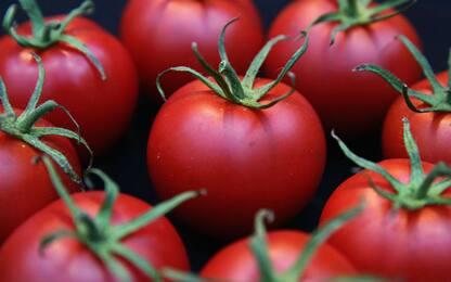 I pomodori? Una volta erano più piccoli e saporiti