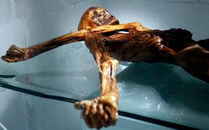 Mummia del Similaun, nel corredo funebre un'ascia di rame toscano