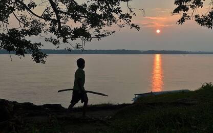 Amazzonia, come gli antichi Indios hanno contribuito alla biodiversità