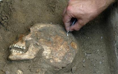 Uomo e scimmia alle origini: alti meno di un metro, pesavano 5 chili