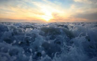 World Oceans Day 2019: eventi e iniziative in Italia