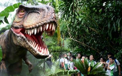 Google, dinosauri in 3D: ecco come osservarli  con la Realtà Aumentata