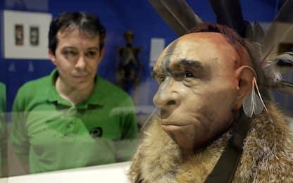 Uomo di Neanderthal, studiato in provetta il suo Dna