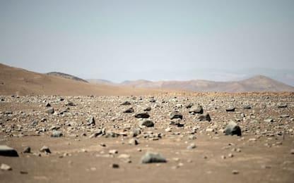 Cile, scoperti microrganismi che sopravvivono per decenni senza acqua