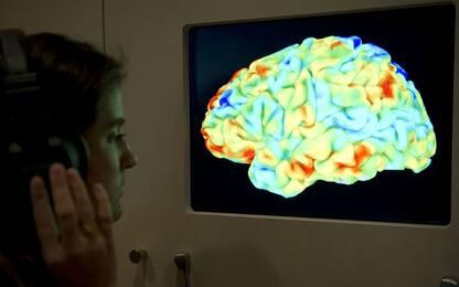 Cervello, la mappa delle emozioni esiste: trovata tramite Forrest Gump