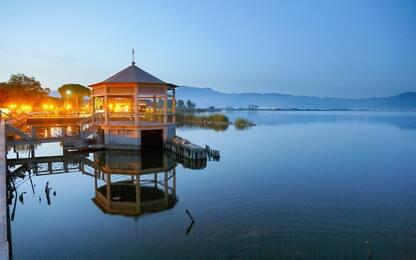 L'alga spirulina può salvare il lago di Puccini