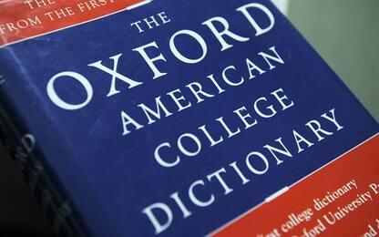 Squid Learning English: come imparare l'inglese con un'app di notizie