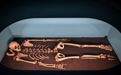 Ricostruito per la prima volta il torace di un Neanderthal in 3D