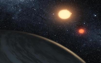 Sulle giganti rosse le macchie stellari sono più comuni del previsto