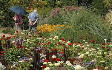 giardino-botanico-getty