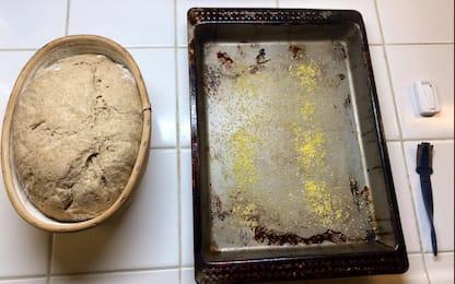 Il pane millenario cucinato con il lievito dell'Antico Egitto