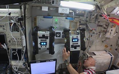 Missione Beyond, il robot Honey è pronto ad aiutare gli astronauti