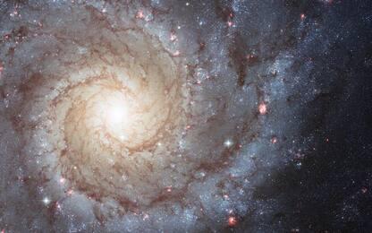 Via Lattea, svelato il motivo della forma a spirale della galassia