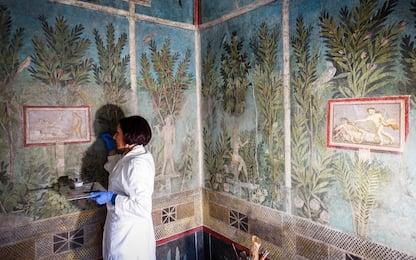 Pompei, il restauro della Casa del Frutteto. FOTO