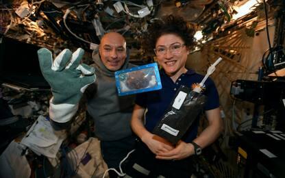 Iss, i primi biscotti cucinati nello spazio tornano sulla Terra