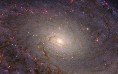 Scoperta un'enorme galassia a disco rotante nell'universo primordiale