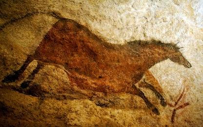 Borneo, scoperti graffiti risalenti ad almeno 40.000 anni fa