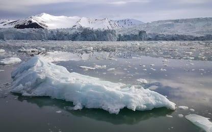 I ghiacci marini artici potrebbero scomparire entro il 2035: lo studio