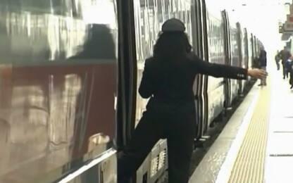 Linea ferroviaria Catania-Siracusa: carcassa di cavallo sui binari