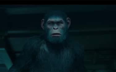 War_Pianeta_delle_scimmie