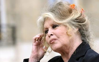 """Molestie, Brigitte Bardot: """"Attrici fanno civette per avere un ruolo"""""""
