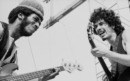 """Cancellato Festival Woodstock 2019: """"Mancano condizioni di sicurezza"""""""