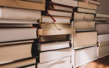 Da It al Conte di Montecristo: 15 libri lunghi da leggere