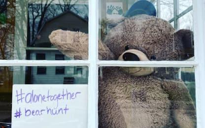 #bearhunt, la caccia all'orsetto di peluche alla finestra