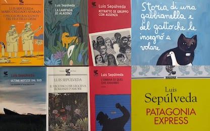 Sepúlveda, i libri più famosi dell'autore scomparso. FOTO