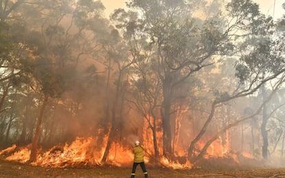 Australia, emergenza incendi: Sydney tra fumo e cenere. VIDEO