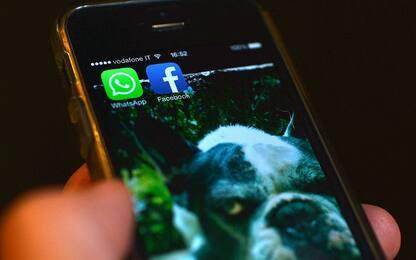 WhatsApp, aggiornamento privacy: senza ok stop servizio l'8 febbraio
