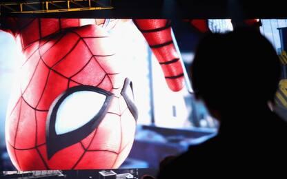 Spider-Man e i suoi fratelli