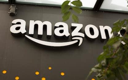 Amazon dalla parte dell'ambiente: nel 2030 50% delle consegne green