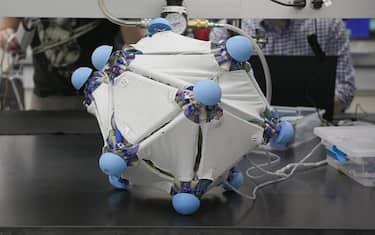 pelle-robotica-yale