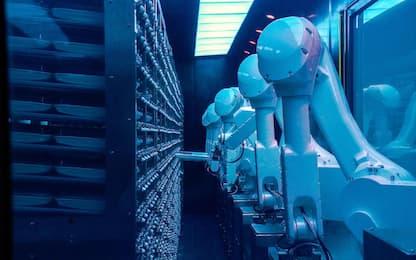 Macchine intelligenti, a rischio il 25% dei posti di lavoro