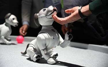 SKY_robot_intelligenza_artificiale_intelligenza_emotiva_1_