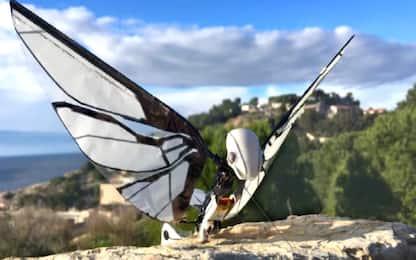 MetaFly, il drone che vola come una farfalla