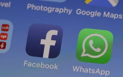 Coronavirus: picco di traffico su WhatsApp, l'allarme di Zuckerberg