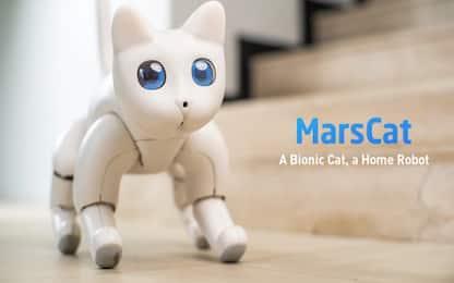 MarsCat, il gatto-robot che miagola e interagisce con i proprietari