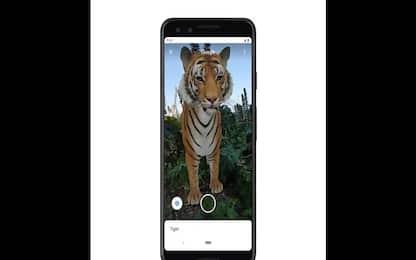 Google, animali in 3D: ecco come osservarli con la Realtà Aumentata